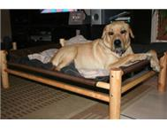 PET ASSIST DOG BEDS