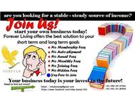 Become an Independent distributor