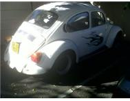 Beetle on the Move....