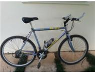 One Mens and one ladies Mountain Bikes - secondhand