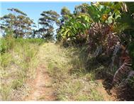 R 1 690 000 | Vacant Land for sale in Schoongezicht Plettenberg Bay Western Cape