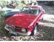 Classic Alfa GT Junior for sale