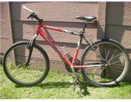 Mountain Bike - Raleigh Eldorado
