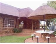 Buffalo Ranch Guest House Guest House in Business for Sale Gauteng Randfontein - South Africa