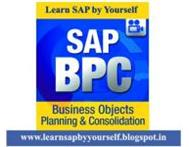 SAP BPC 10 & BPC 7.5 Project based Training Videos DVDs Cape Town