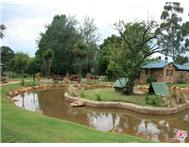 Commercial Sale in Dullstroom Within 10Kms