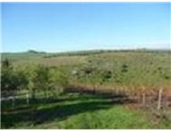 Farm for sale in Durbanville