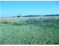 Vacant land / plot for sale in Struisbult