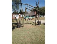 Small Holding For Sale in SUNDRA DELMAS