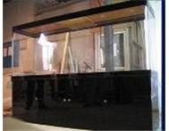 Cheapest Custom-Built and Imported Fish Tanks in Jhb! Johannesburg