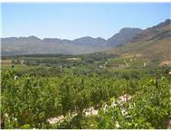 Vacant Land Agricultural For Sale in PAARL PAARL