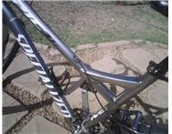 Specailized Mountain Bike Large