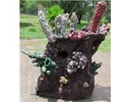 ARTIFICIAL REEF FOR MARINE/SEAWATER...