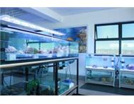 REEF AQUATICS - Marine Aquarium equipment Livestock ect ...