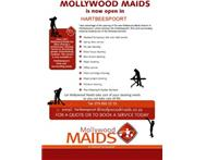 Mollywood Maids Hartbeespoort Domestic Cleaning Service in Office & Home Cleaning North West