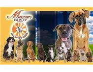Master s Choice Dog Food