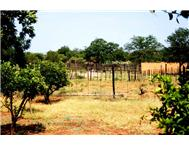 Game Farm Lodge For Sale in MUSINA MUSINA