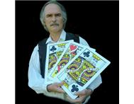 Mario The Magician Magician in Musicians and artists Gauteng Centurion - South Africa