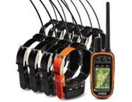 Garmin Astro 320 Dog GPS Tracking Bundle With 10 DC40 Collar Cape Town