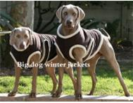 Dog clothing and accessories from XXS to XXLarge breeds!