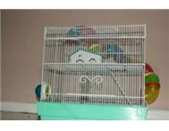 2 storey rat/hamster cage with many extras