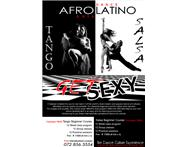 AFROLATINO Dance Art Culture Co.