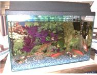 Complete Aquarium Pretoria North