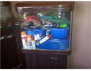 Fish Tank Fully loaded