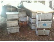 Bee hives and honey for sale