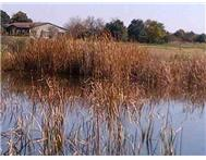 Farm for sale in Oudedorp