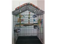 Bird Cage on Stand with toys