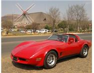 81 Corvette Stingray
