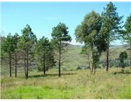 Vacant land / plot for sale in Underberg