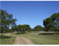 Farm For Sale in JEFFREYS BAY JEFFREYS BAY