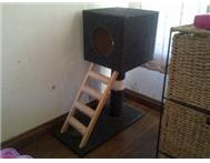 Cat tree For Sale Vereeniging-kopanong