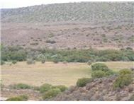 Farm for sale in Ladismith