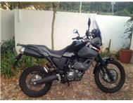 Yamaha Tenere 660 Awesome condition basically new.