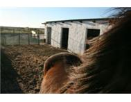 Horse stabling available in Velddrif