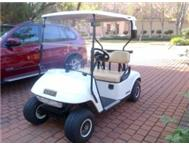 VERY NEAT GOLF CART FOR SALE