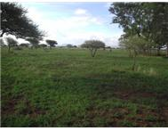 Undeveloped Farm in Farms & Plots to Rent Limpopo Bela-bela - South Africa