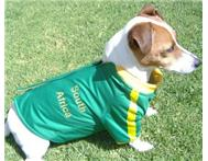 Dog Clothing And Dog Beds in Pet Food & Products KwaZulu-Natal Ballito - South Africa