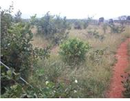 R 292 000 | Vacant Land for sale in African Jewel Polokwane Limpopo