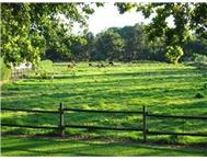 Smallholding For Sale in STELLENBOSCH STELLENBOSCH