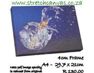 21 Fish Jump Bowl 4cmF 29.7 X 21cm R130 New in Stationery & Office KwaZulu-Natal Bluff Durban - South Africa