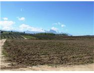 Farm for sale in Swellendam