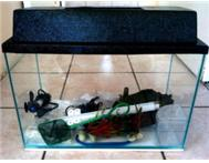 30 ltr Fish tank with equipment