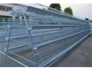 Chicken layer cage for layers and broiler breeders for sale.