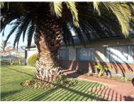 House For Sale in JANSENPARK BOKSBURG