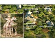 Pretoria - Limpopo Leopardsong Game Lodge - 5 Star