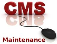 Website Maintenance from R295